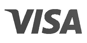 Visa Logo Grey